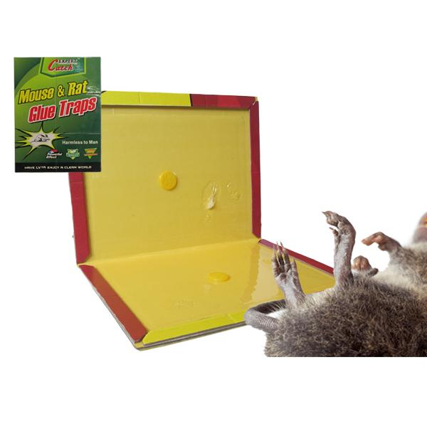 Αυτοκόλλητη παγίδα για ποντίκια και αρουραίους