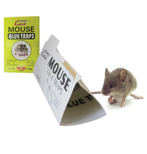 Σετ 2 αυτοκόλλητες ποντικοπαγίδες
